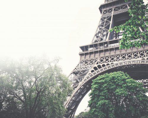 Formula Lingua ile Fransızca özel ders eğitimleri.