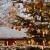 Yılbaşı kutlamaları ve Noel ağacının tarihi